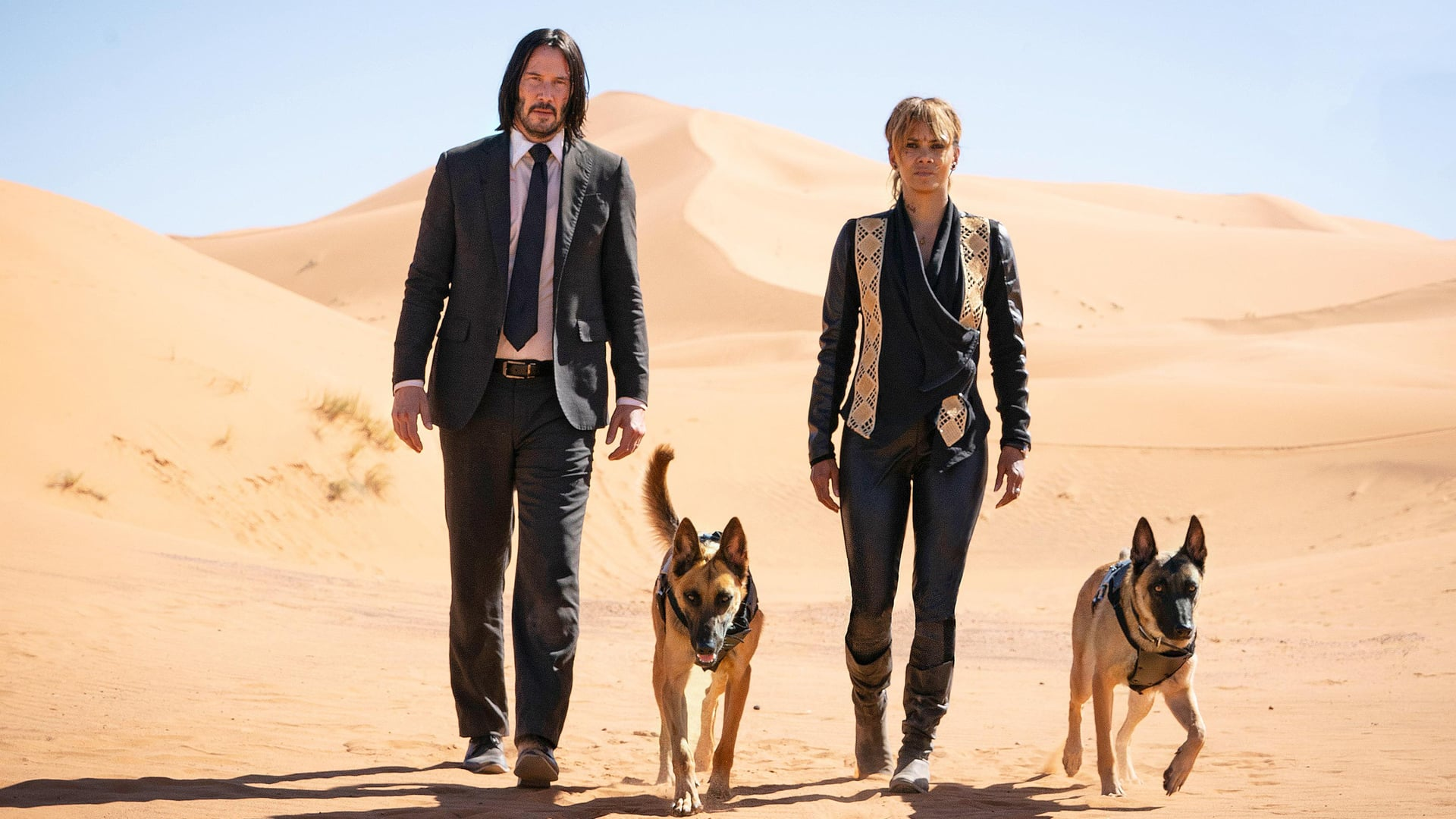 "Image from the movie ""John Wick: Chapter 3 – Parabellum"""
